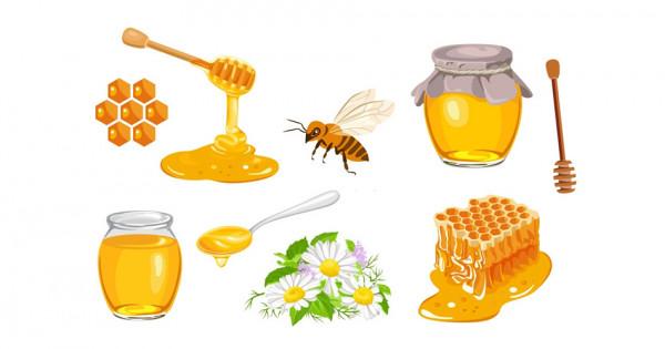 Dégustation de miels